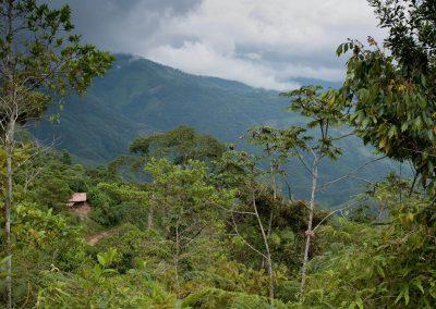 Guatemala-290